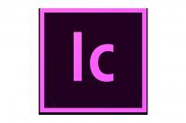 http://dpyxfisjd0mft.cloudfront.net/lab9-2/B2B/Producten%20-%20Grafics/Adobe/InCopy.png?1455020861&w=1000&h=660