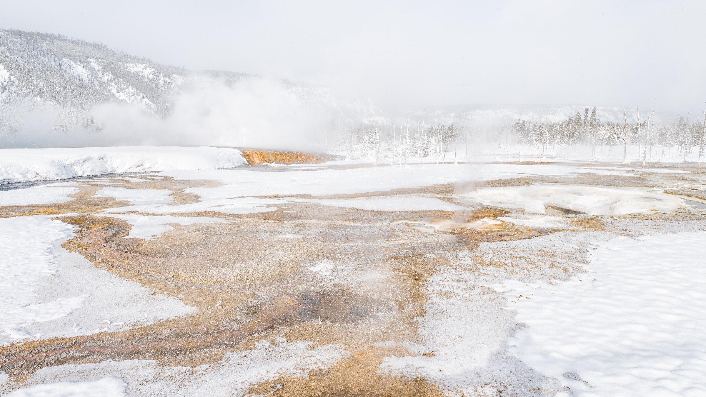 Yellowstone 9824