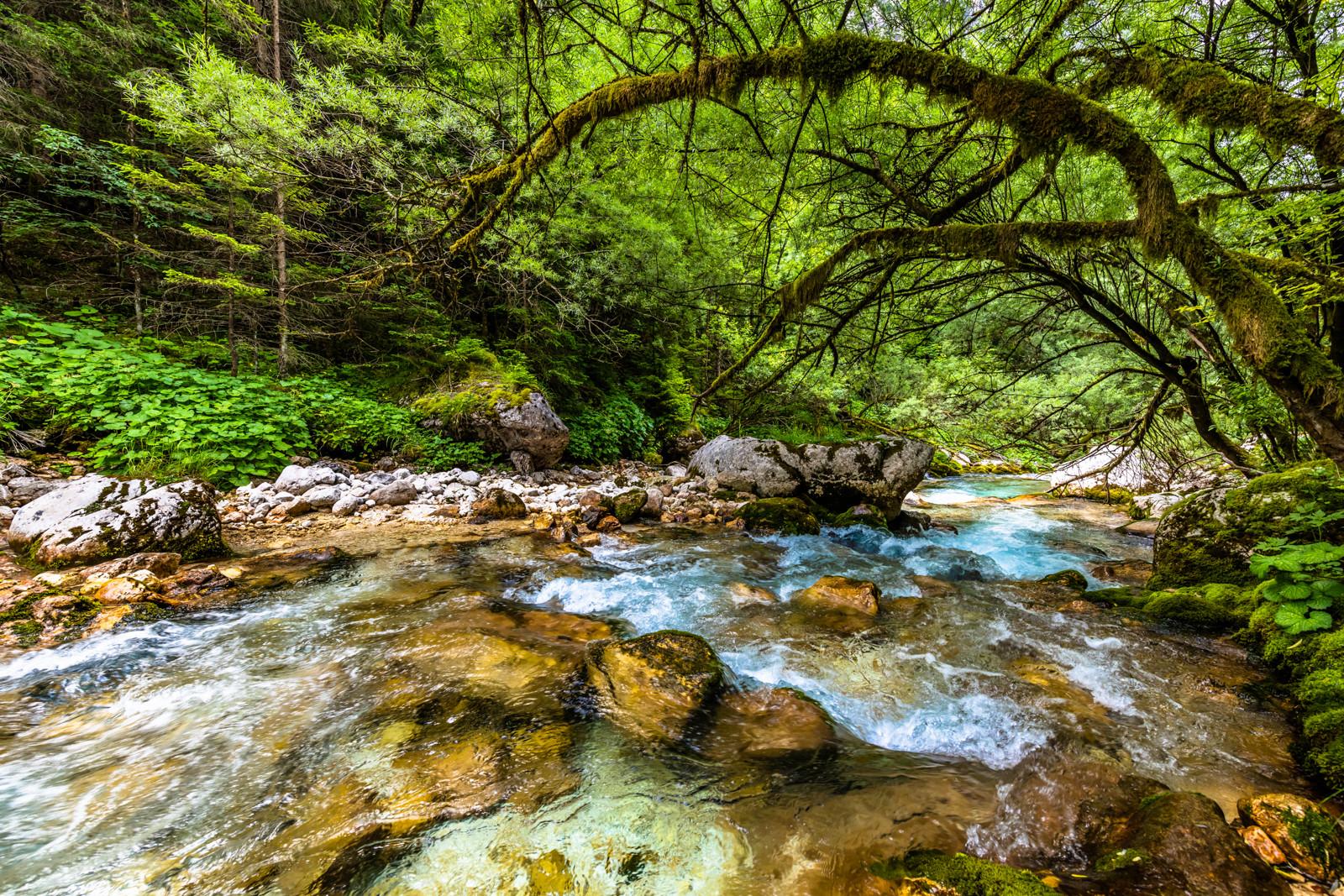 Slovenië-1.jpg