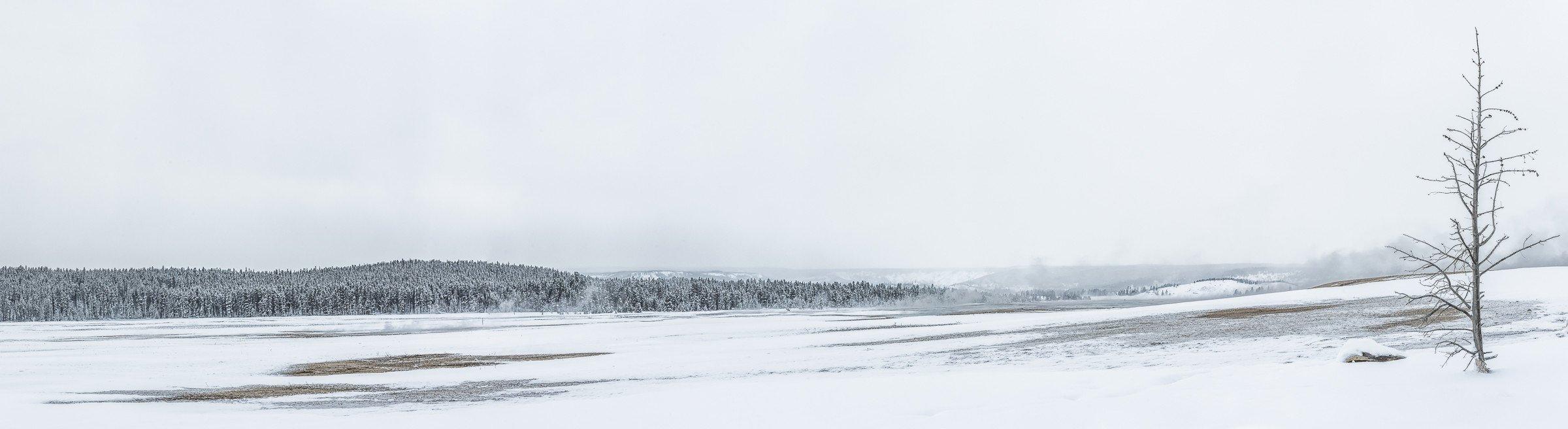 landschap Yellowstone 0194