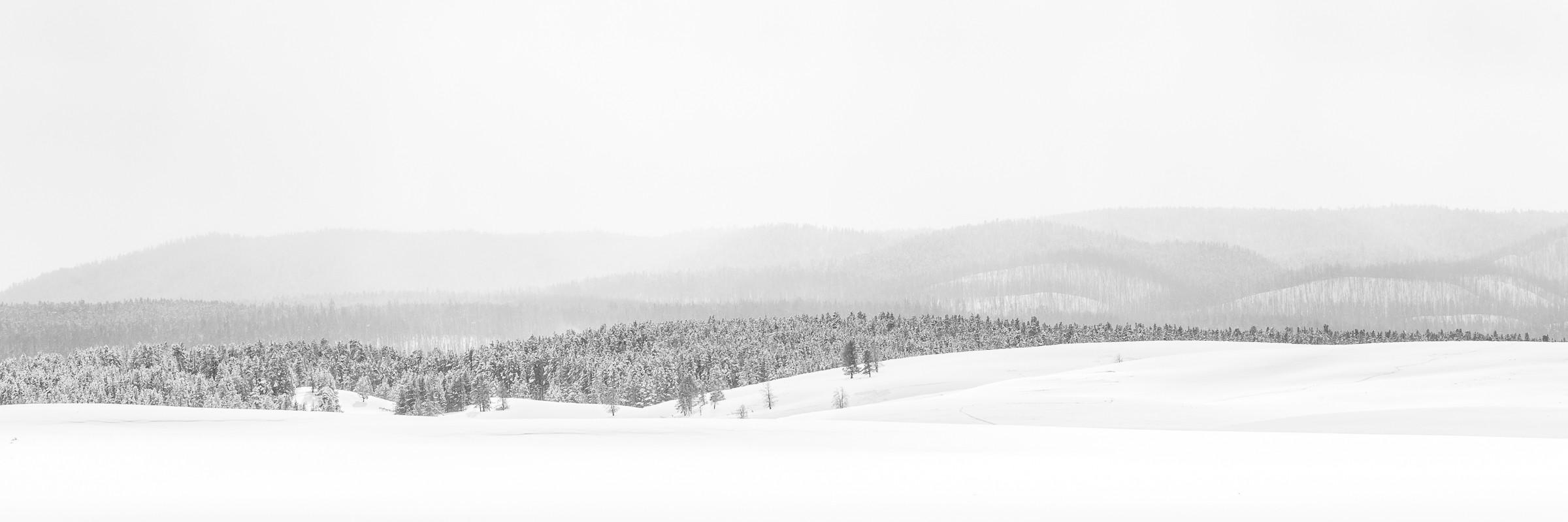 landschap Yellowstone 0674