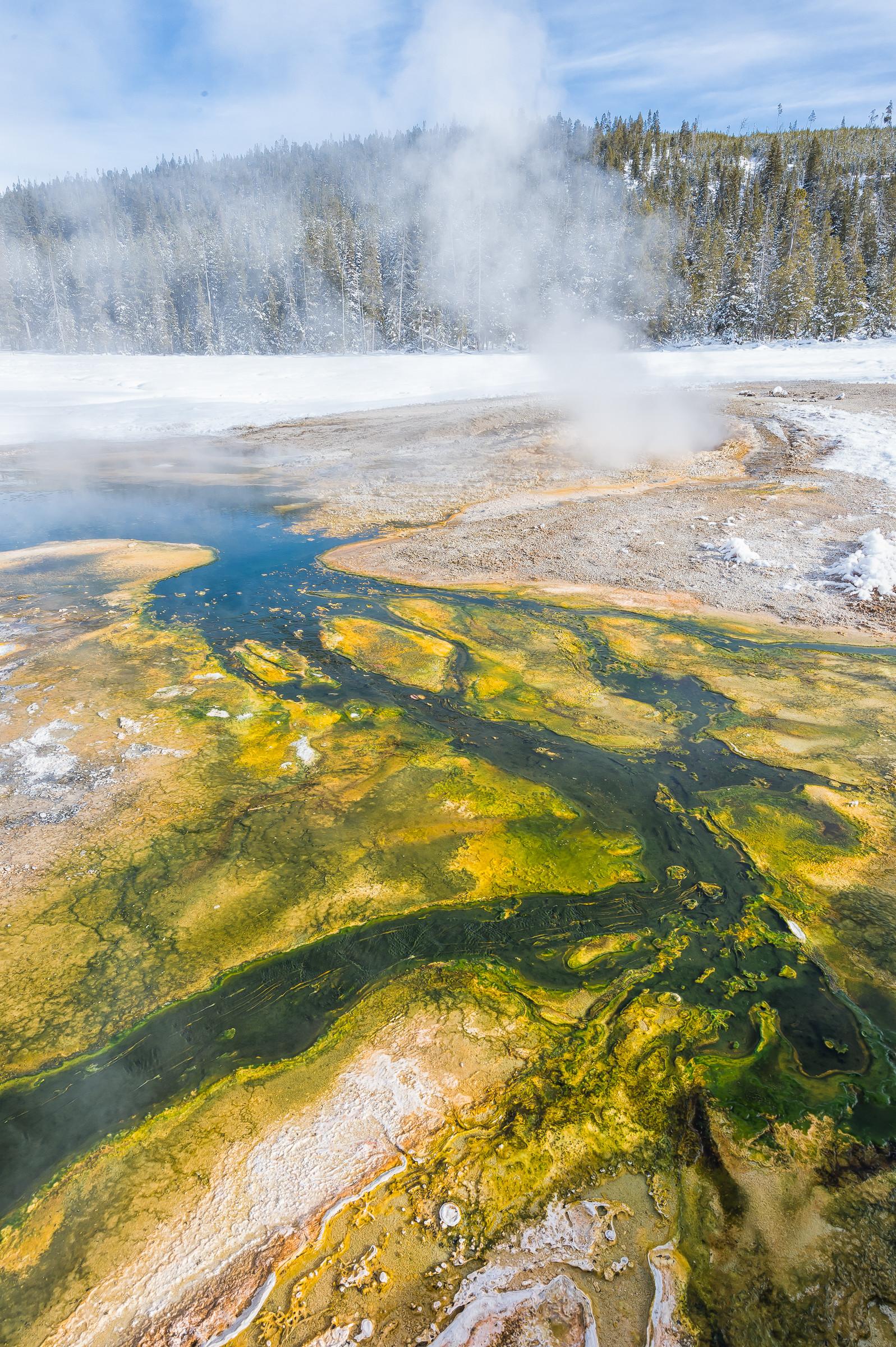 landschap Yellowstone 6351