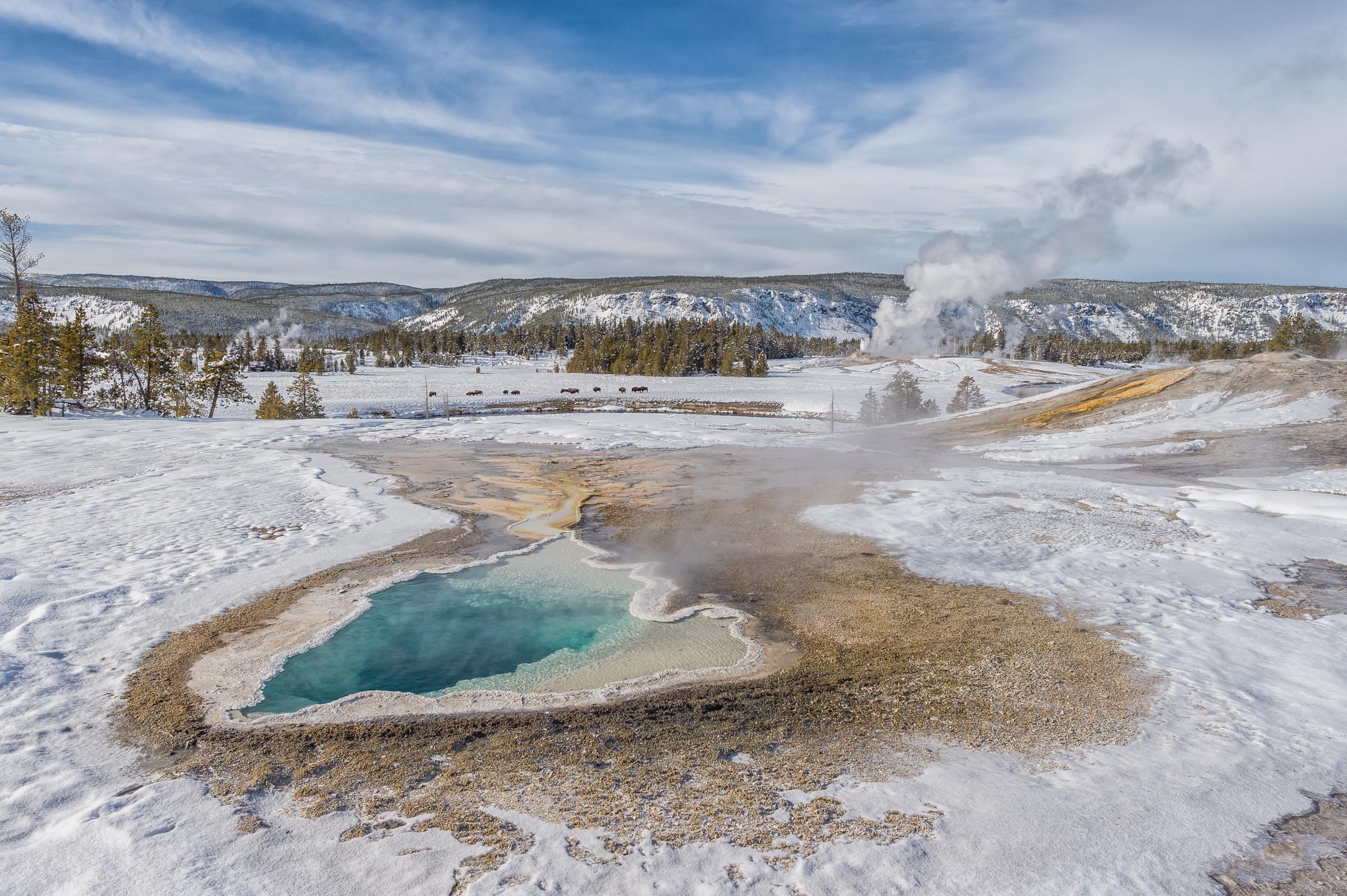 landschap Yellowstone 6436