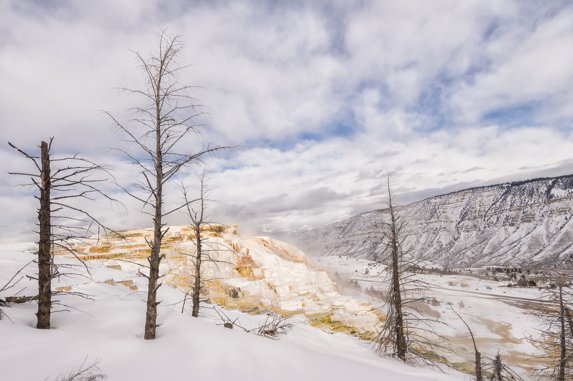 landschap Yellowstone 8303