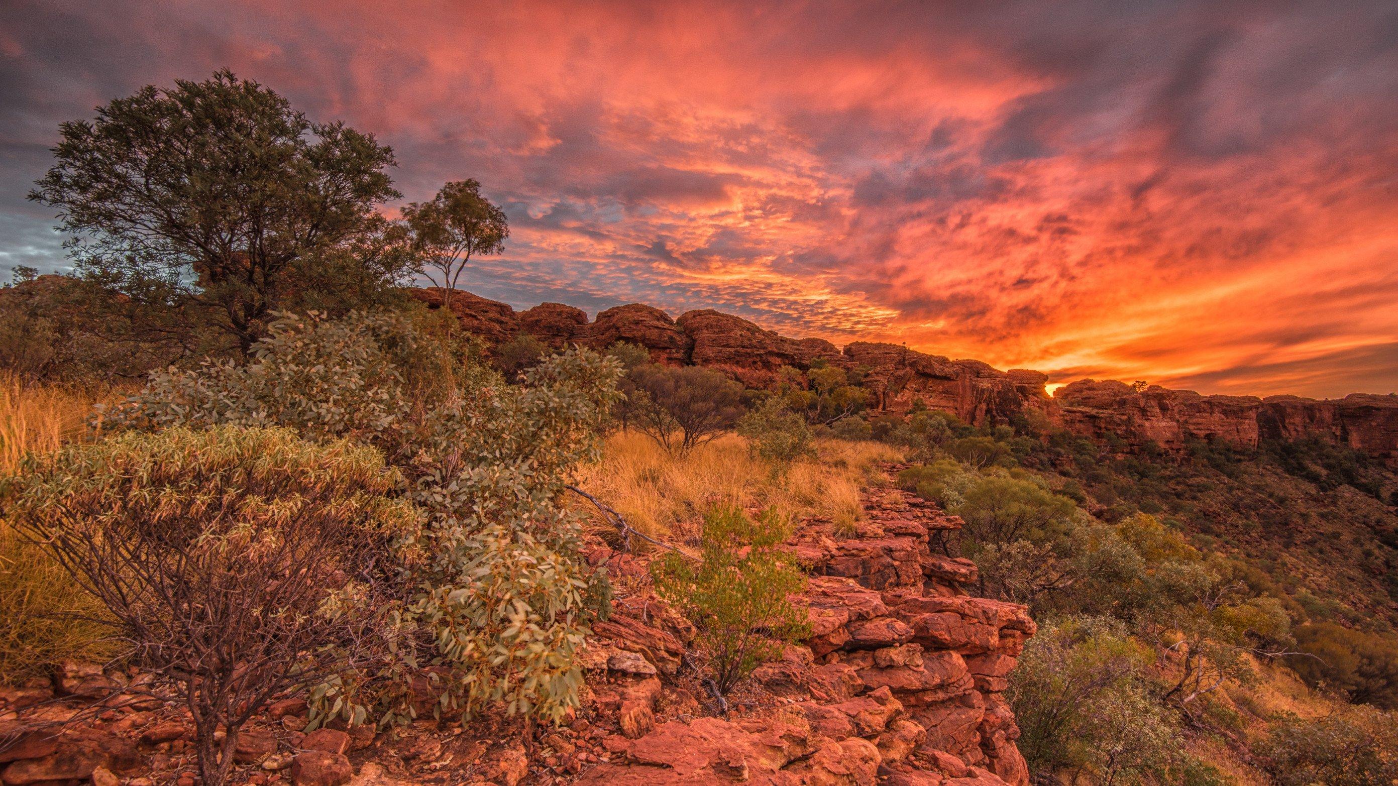landschap Australie 9142
