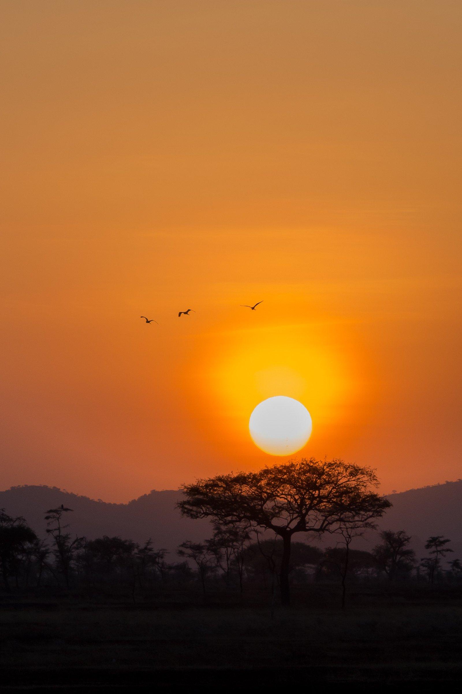 landschap africa 5729