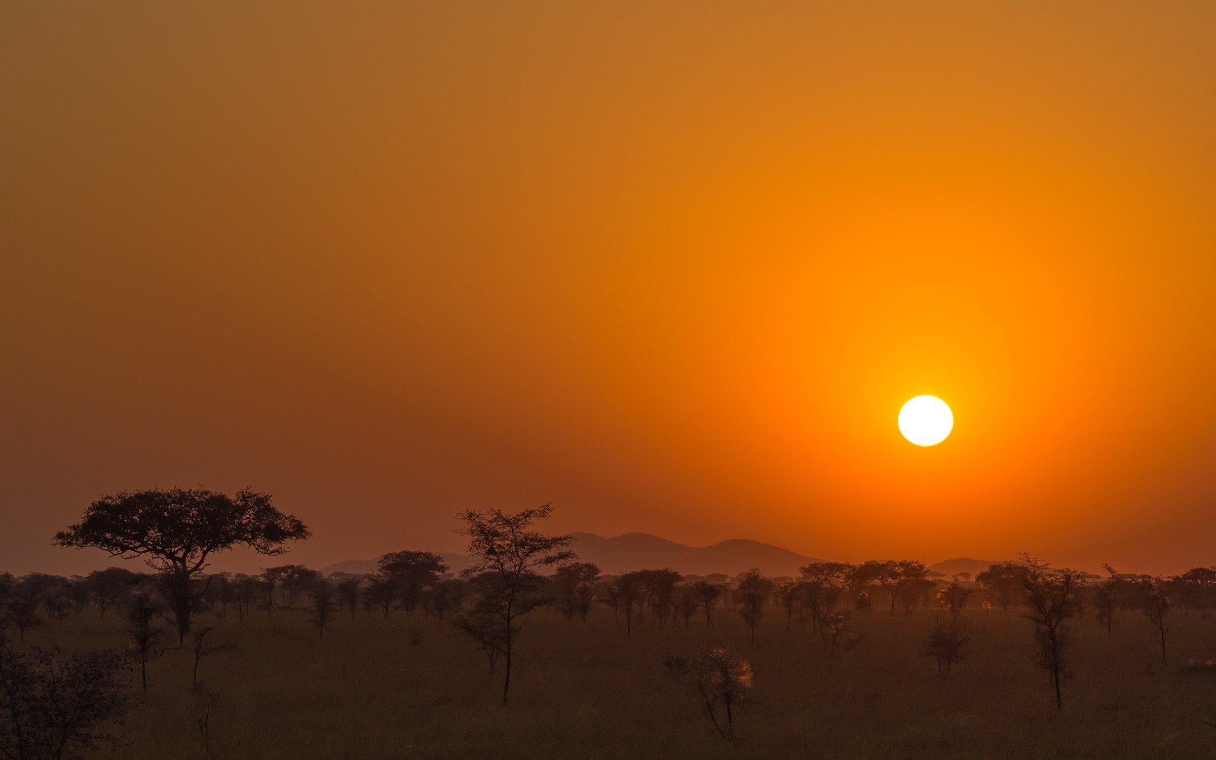 landschap africa 1194