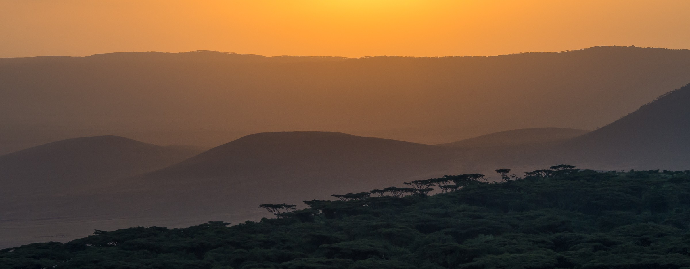 landschap africa 1503