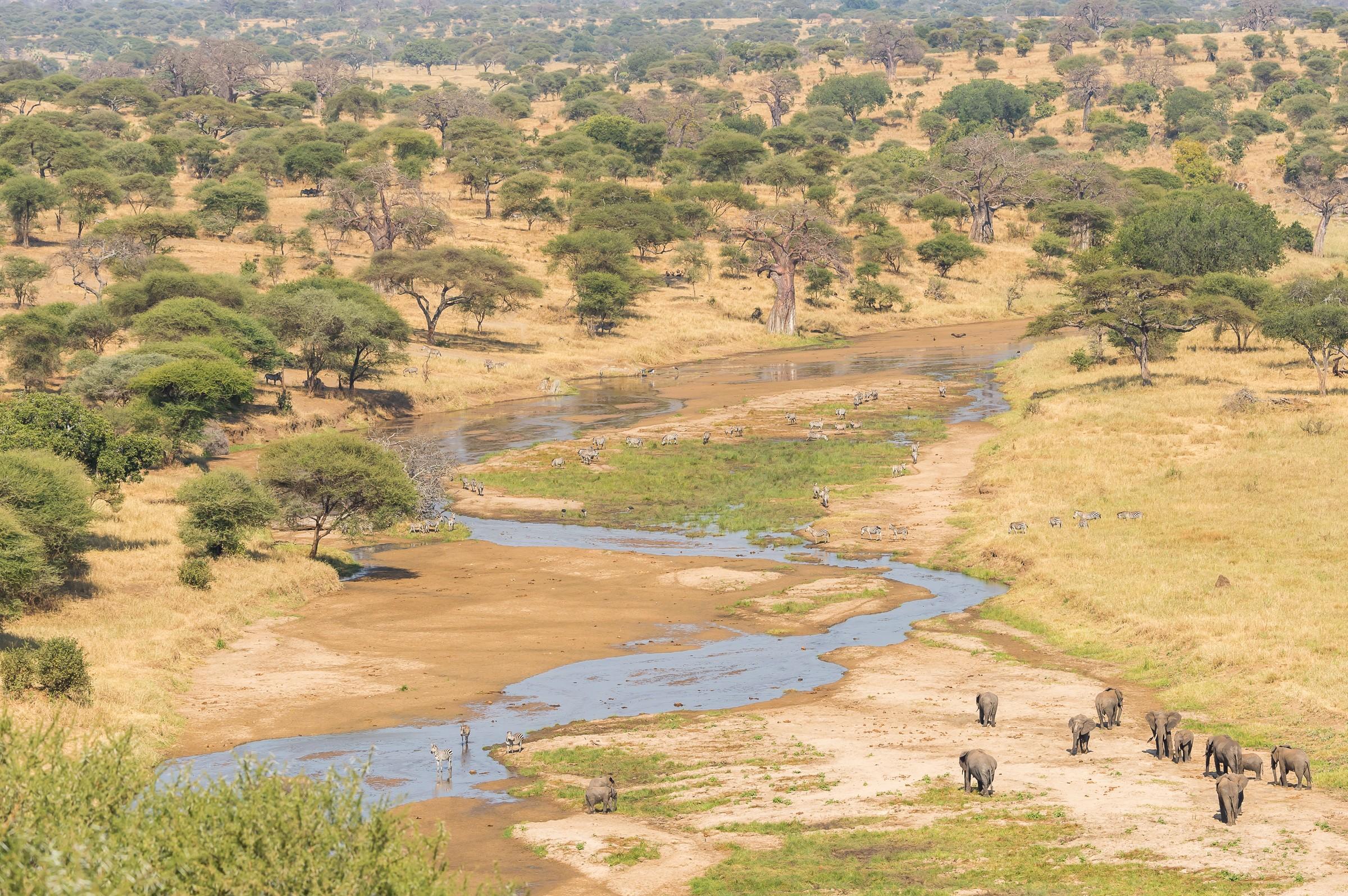 landschap africa 7889