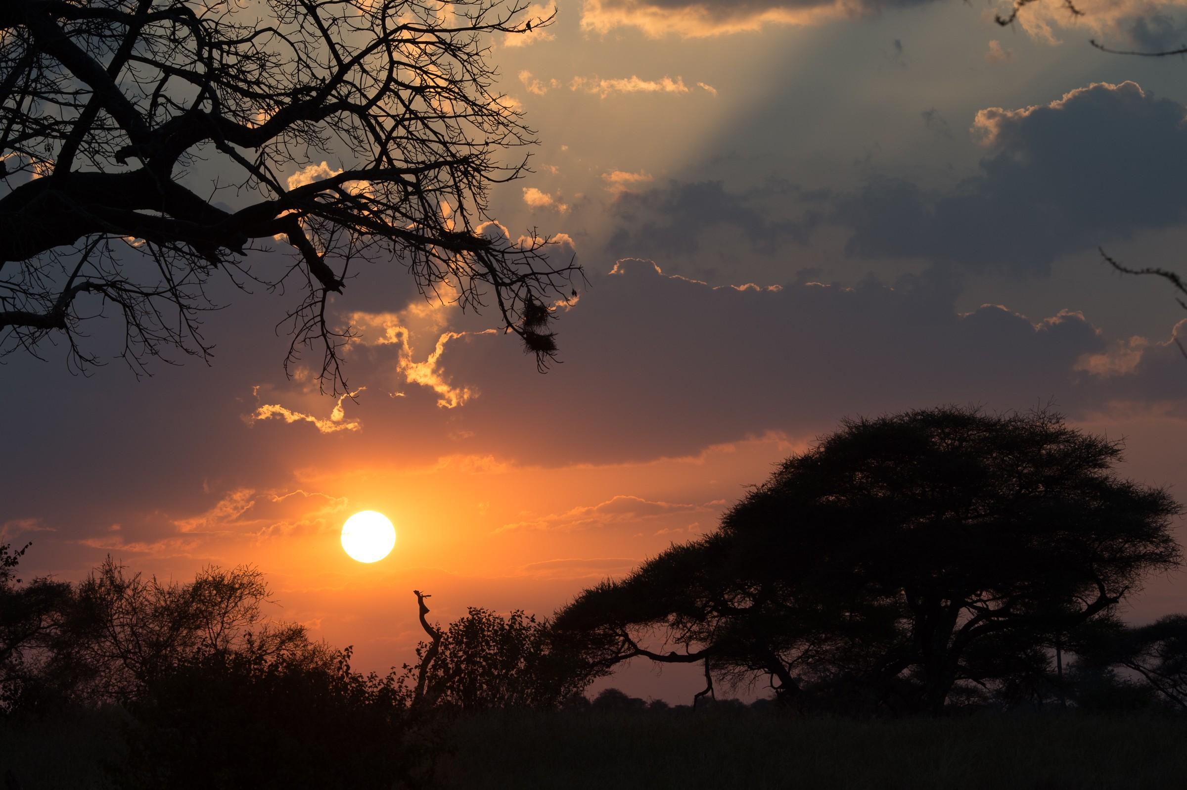 landschap africa 8029