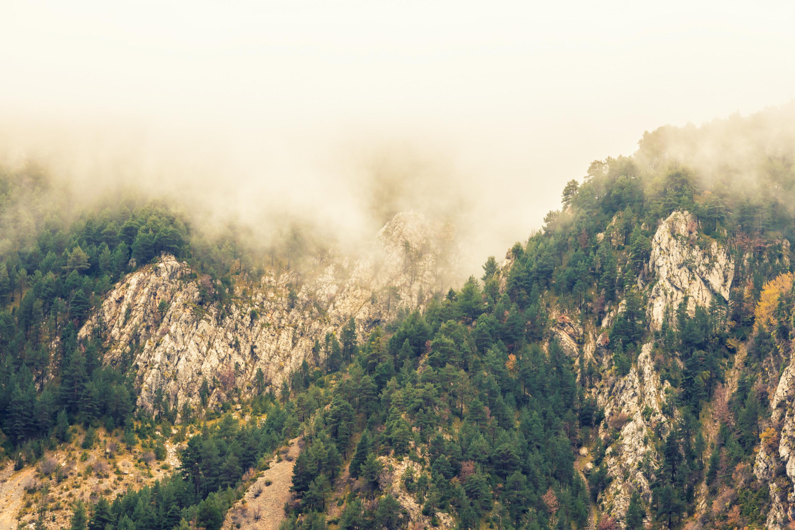 landschap europa 0627
