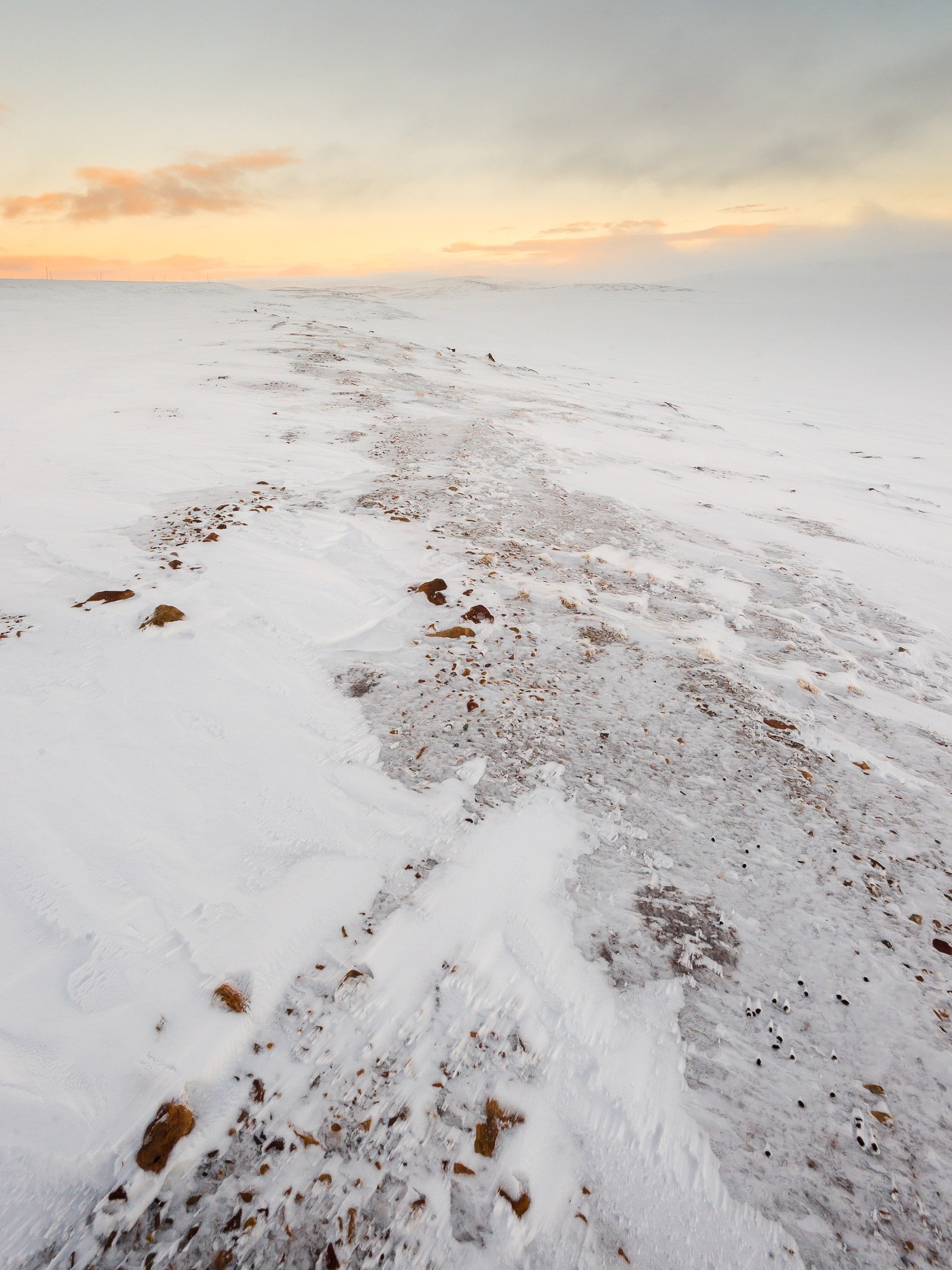20150305-winters lapland_ND48643-bewerkt.jpg