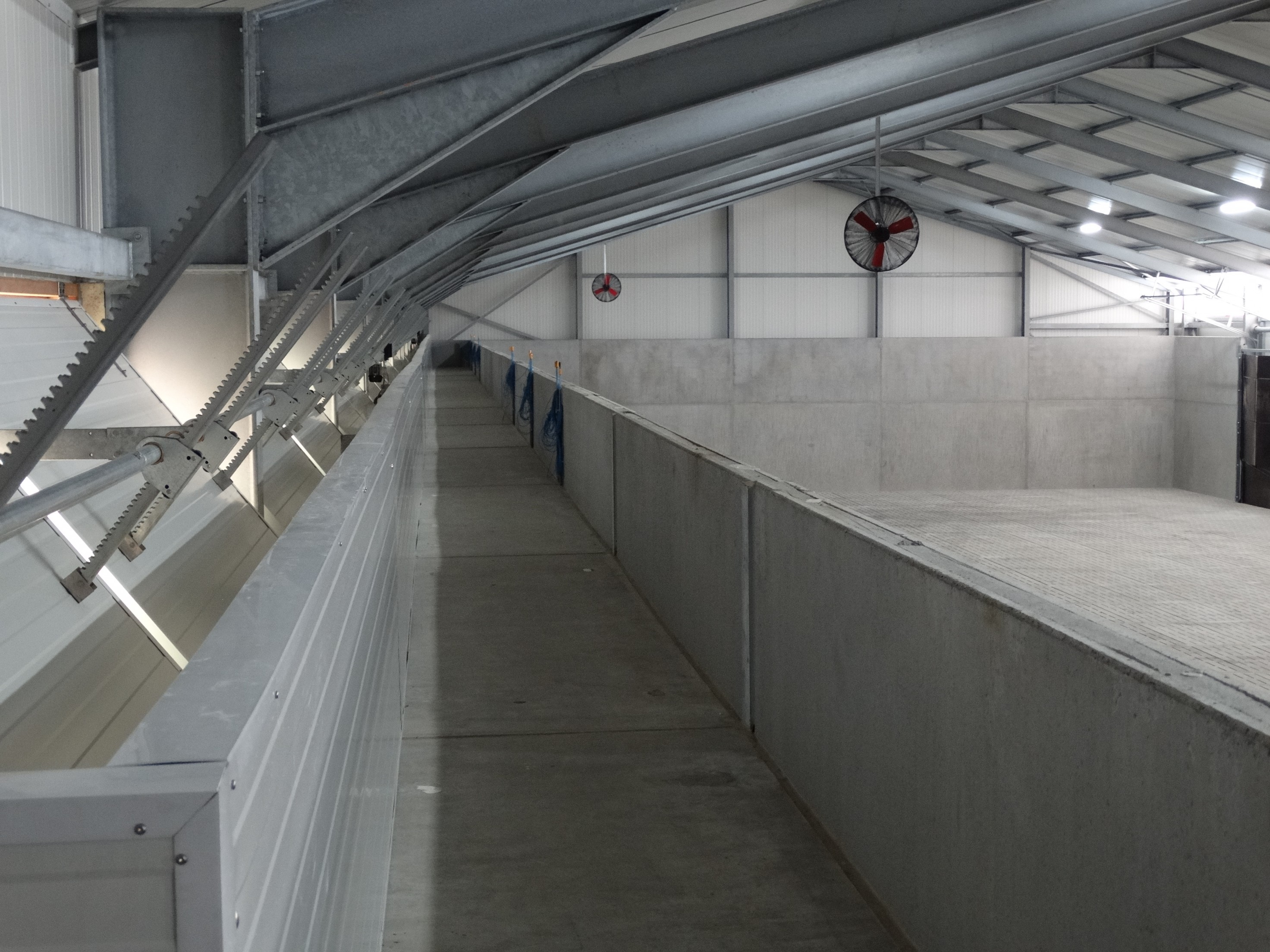 lefevre-Rosseignies-aardappelloods_hangar stockage pommes de terre (14).JPG