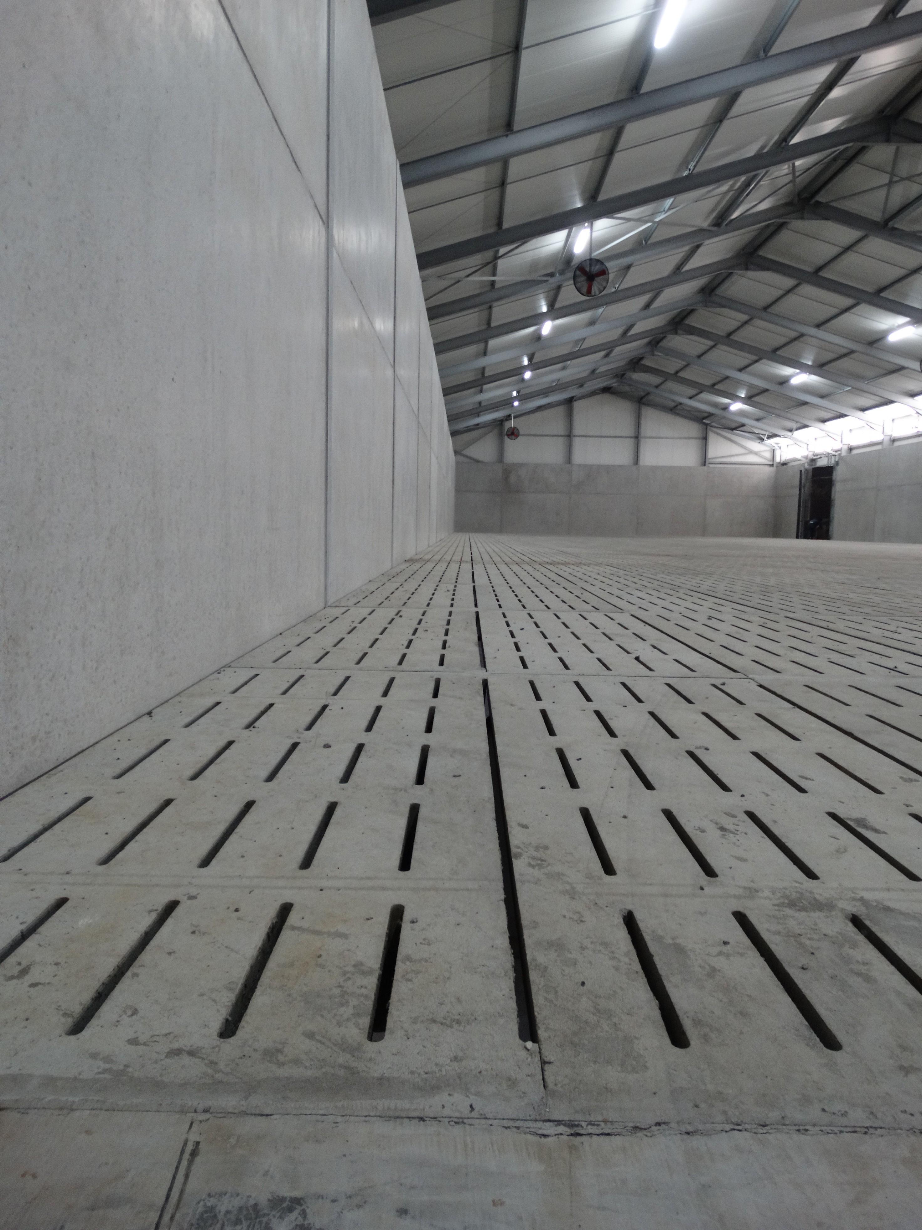 lefevre-Rosseignies-aardappelloods_hangar stockage pommes de terre (3).JPG