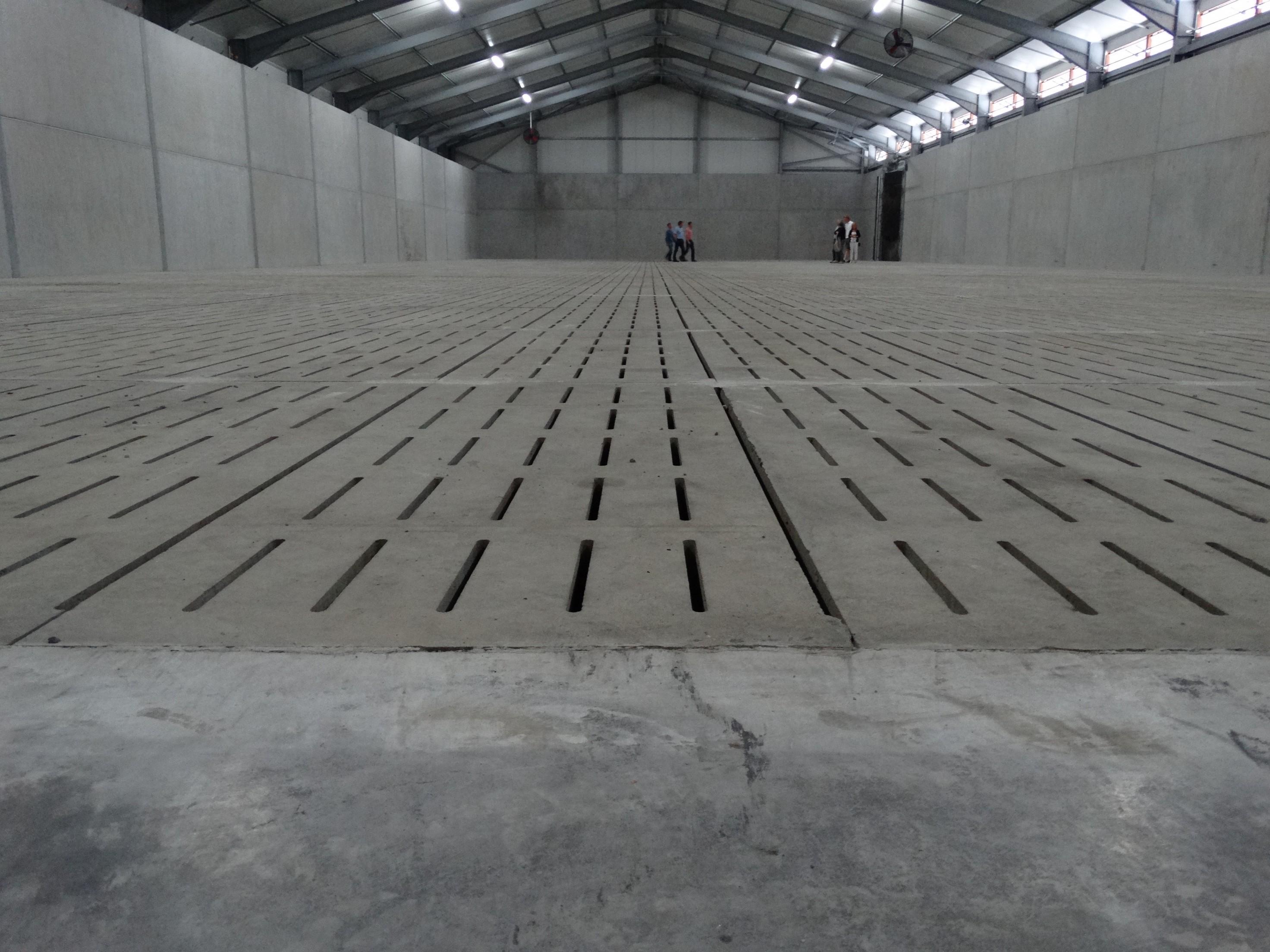 lefevre-Rosseignies-aardappelloods_hangar stockage pommes de terre (40).JPG