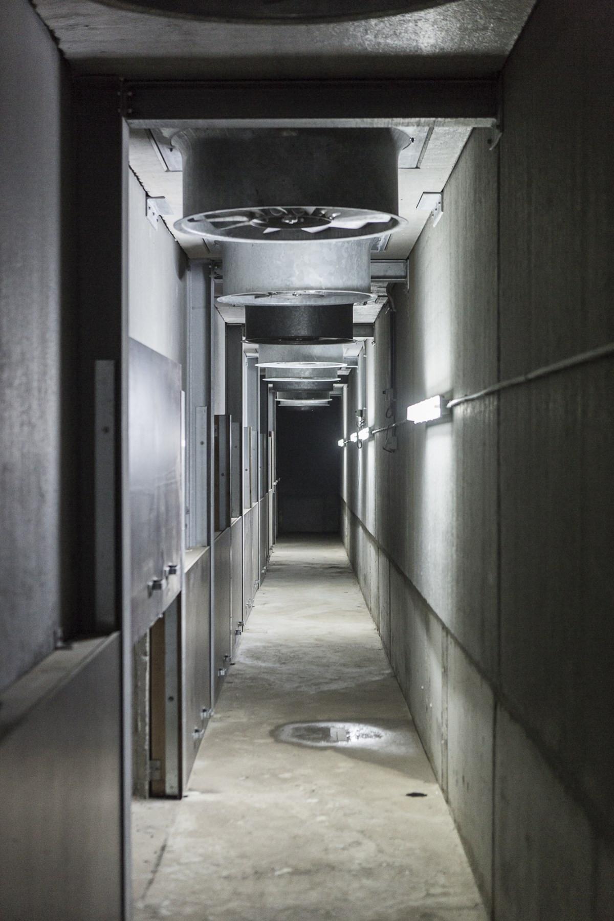 LV Dauchy_Wijtschate_aardappelloods_hangar_pomme_de_terre16.jpg