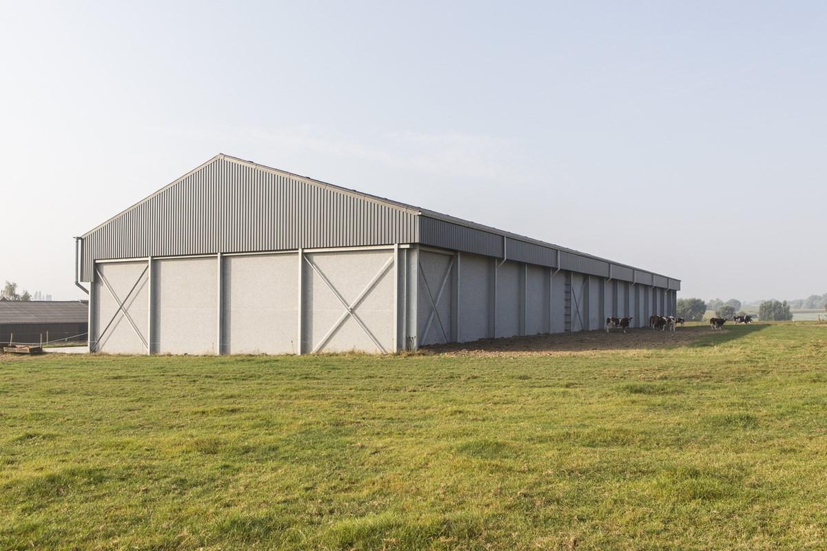 LV Dauchy_Wijtschate_aardappelloods_hangar_pomme_de_terre26.jpg