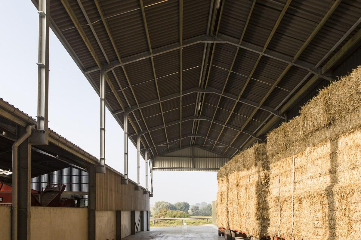 LV Dauchy_Wijtschate_aardappelloods_hangar_pomme_de_terre27.jpg