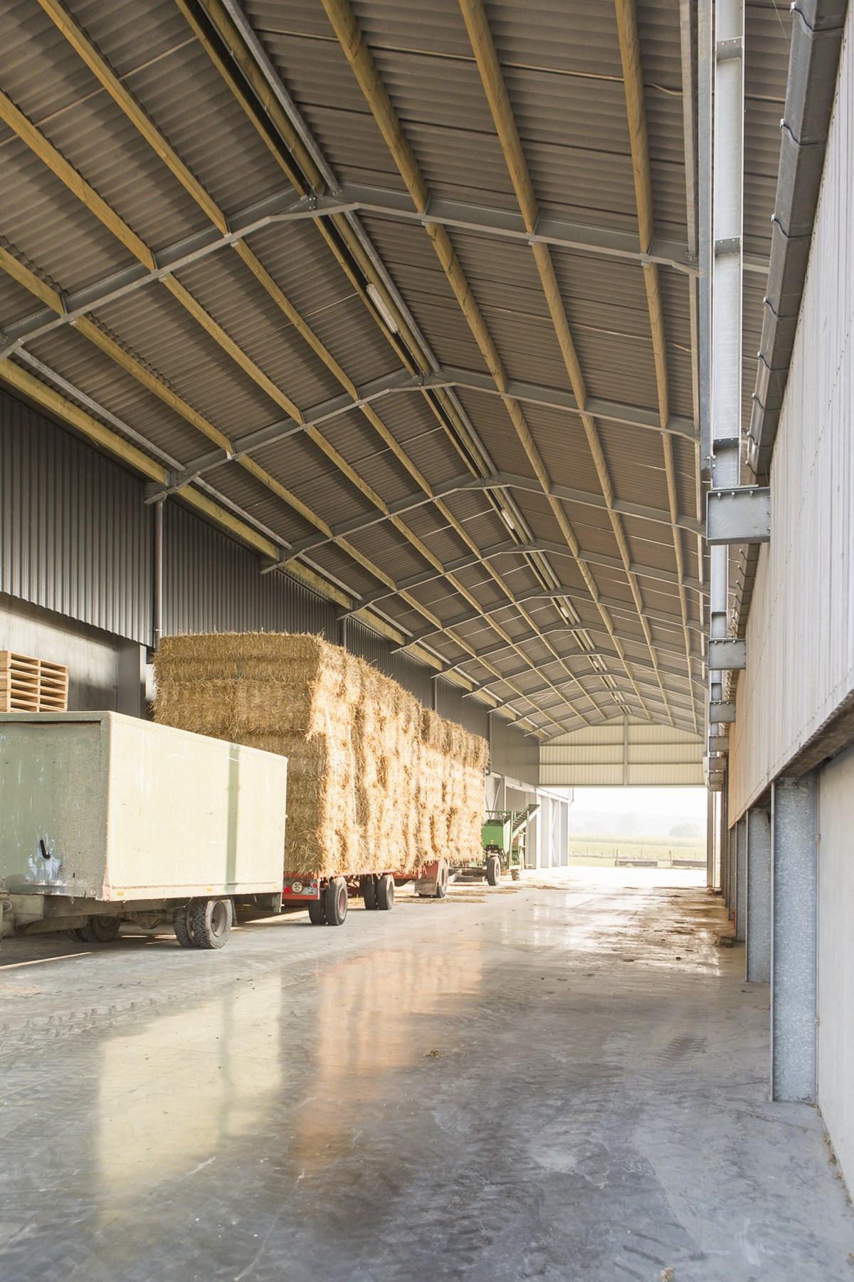 LV Dauchy_Wijtschate_aardappelloods_hangar_pomme_de_terre9.jpg