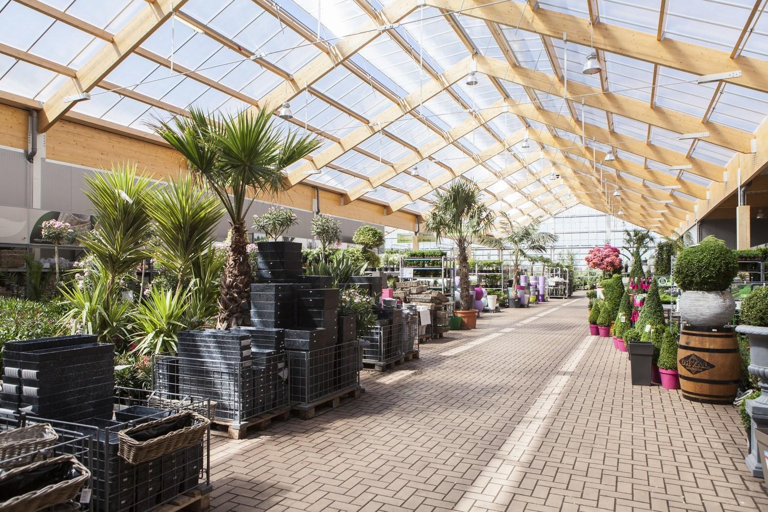 tuincenter famiflora Dottenijs (27).jpg