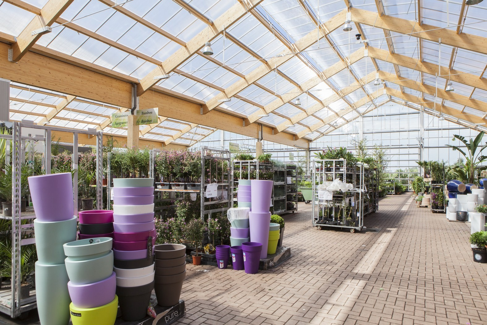 tuincenter famiflora Dottenijs (29).jpg