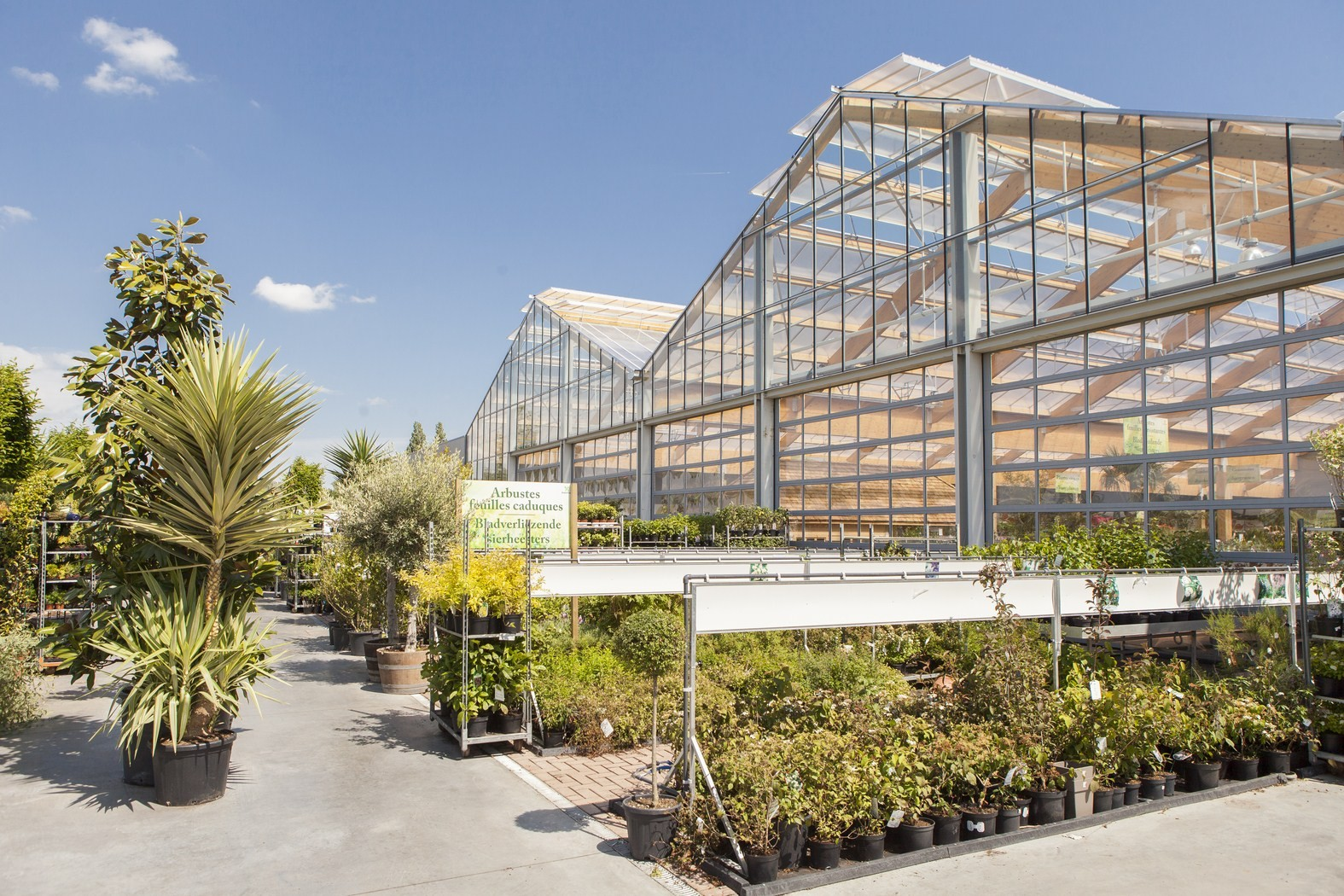 tuincenter famiflora Dottenijs (58).jpg