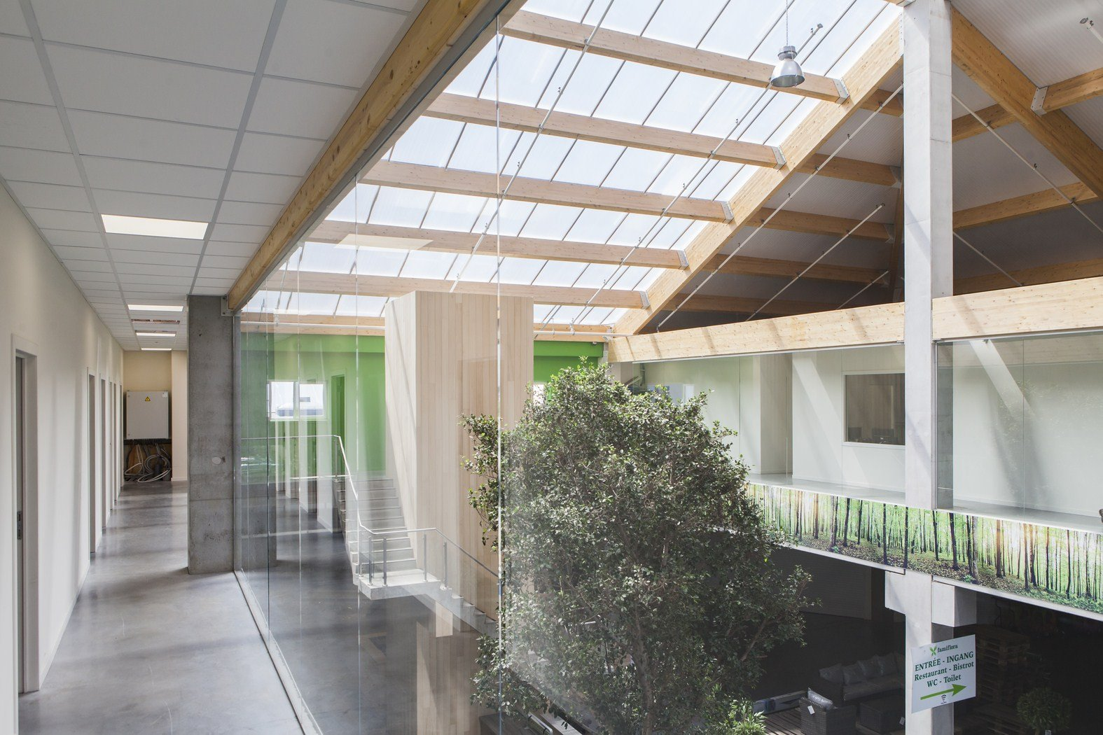 tuincenter famiflora Dottenijs (61).jpg