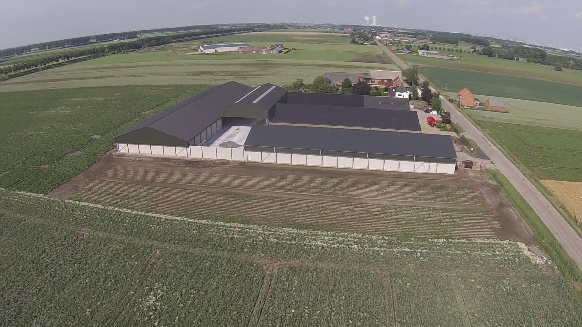 Thielman bvba_aardappelloods_aardappelopslagloods_Hangar pommes de terre_Meerdonk (11).jpg