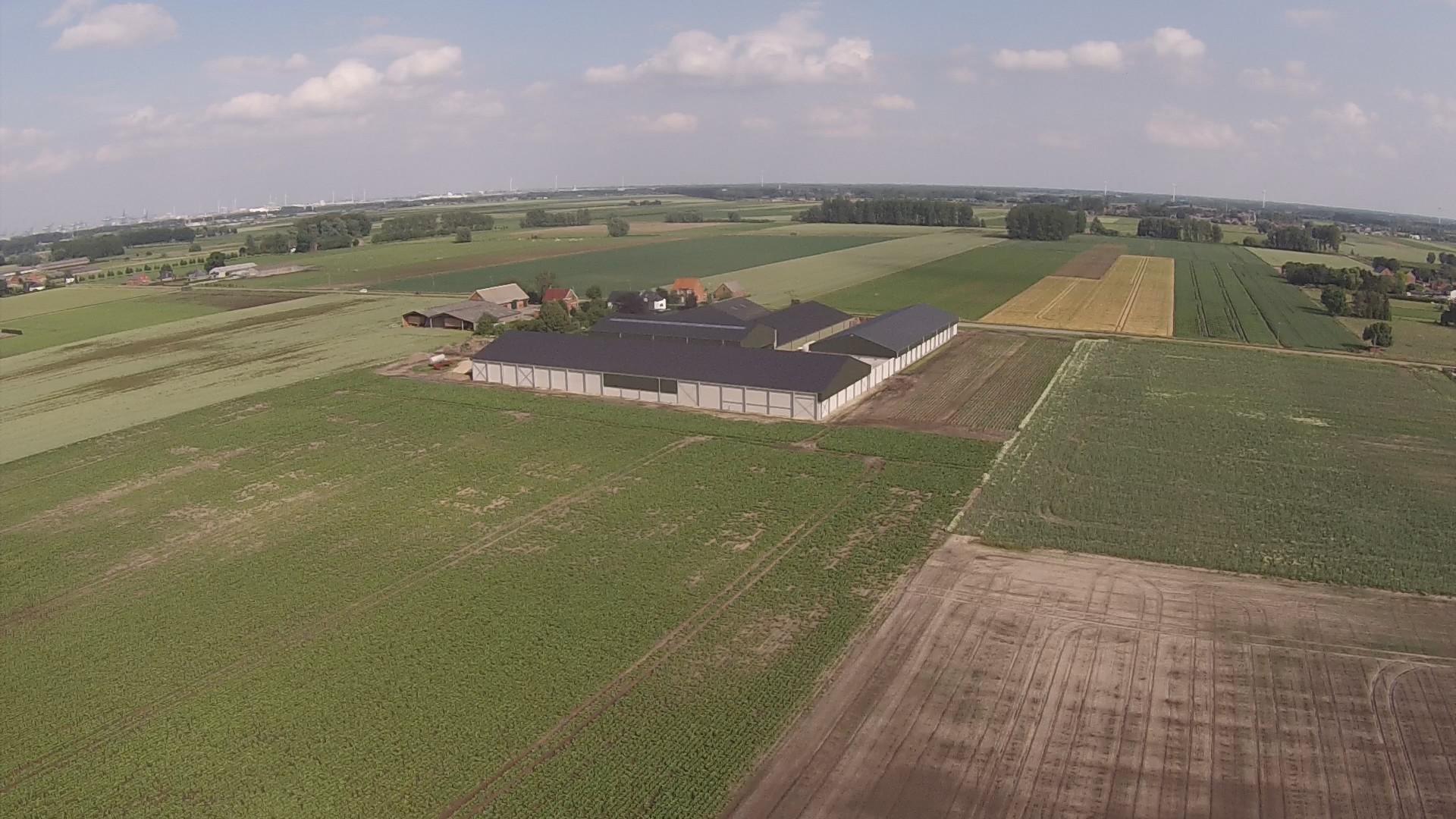 Thielman bvba_aardappelloods_aardappelopslagloods_Hangar pommes de terre_Meerdonk (5).jpg