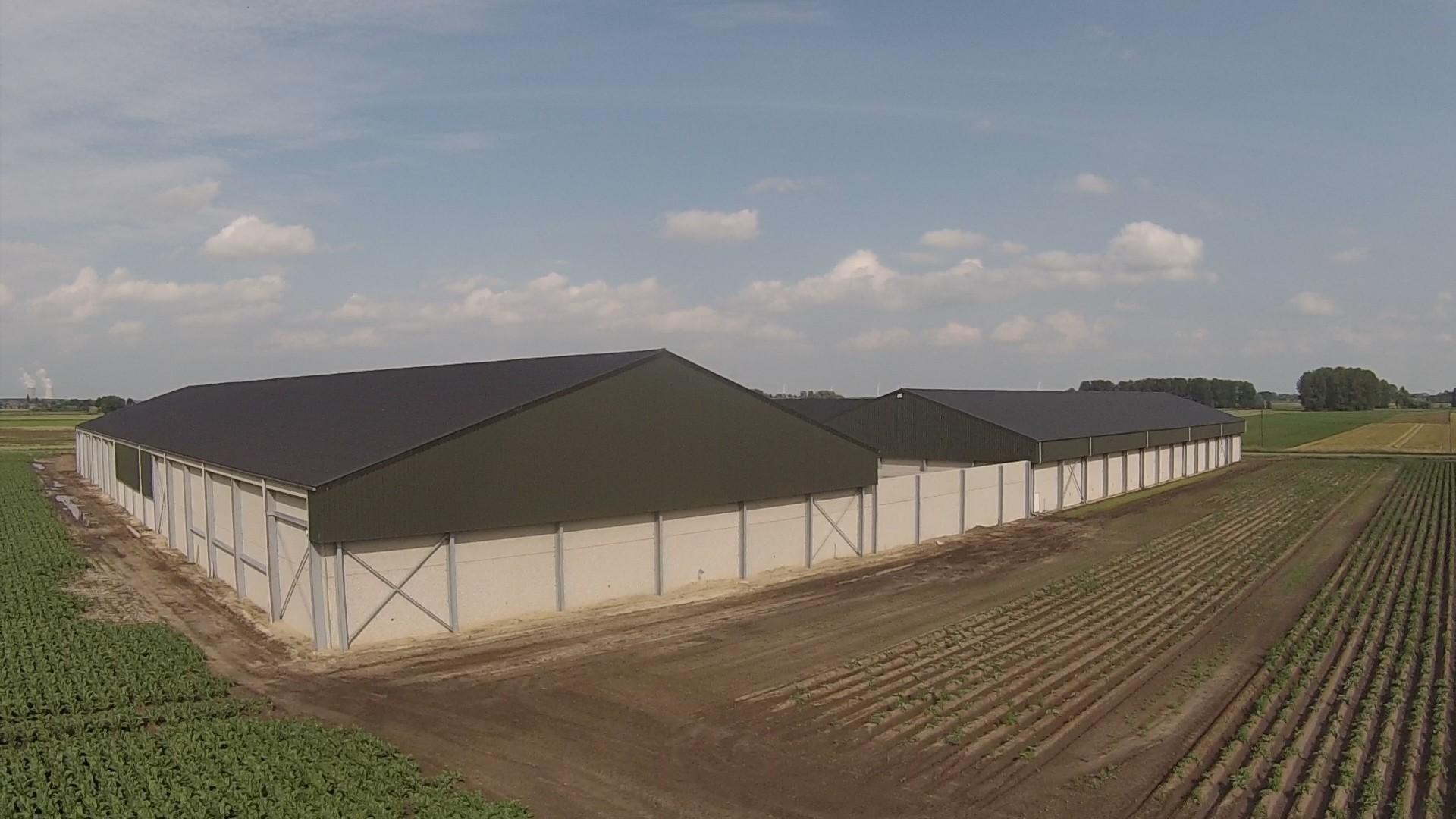 Thielman bvba_aardappelloods_aardappelopslagloods_Hangar pommes de terre_Meerdonk (7).jpg