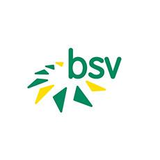 BSV.jpg