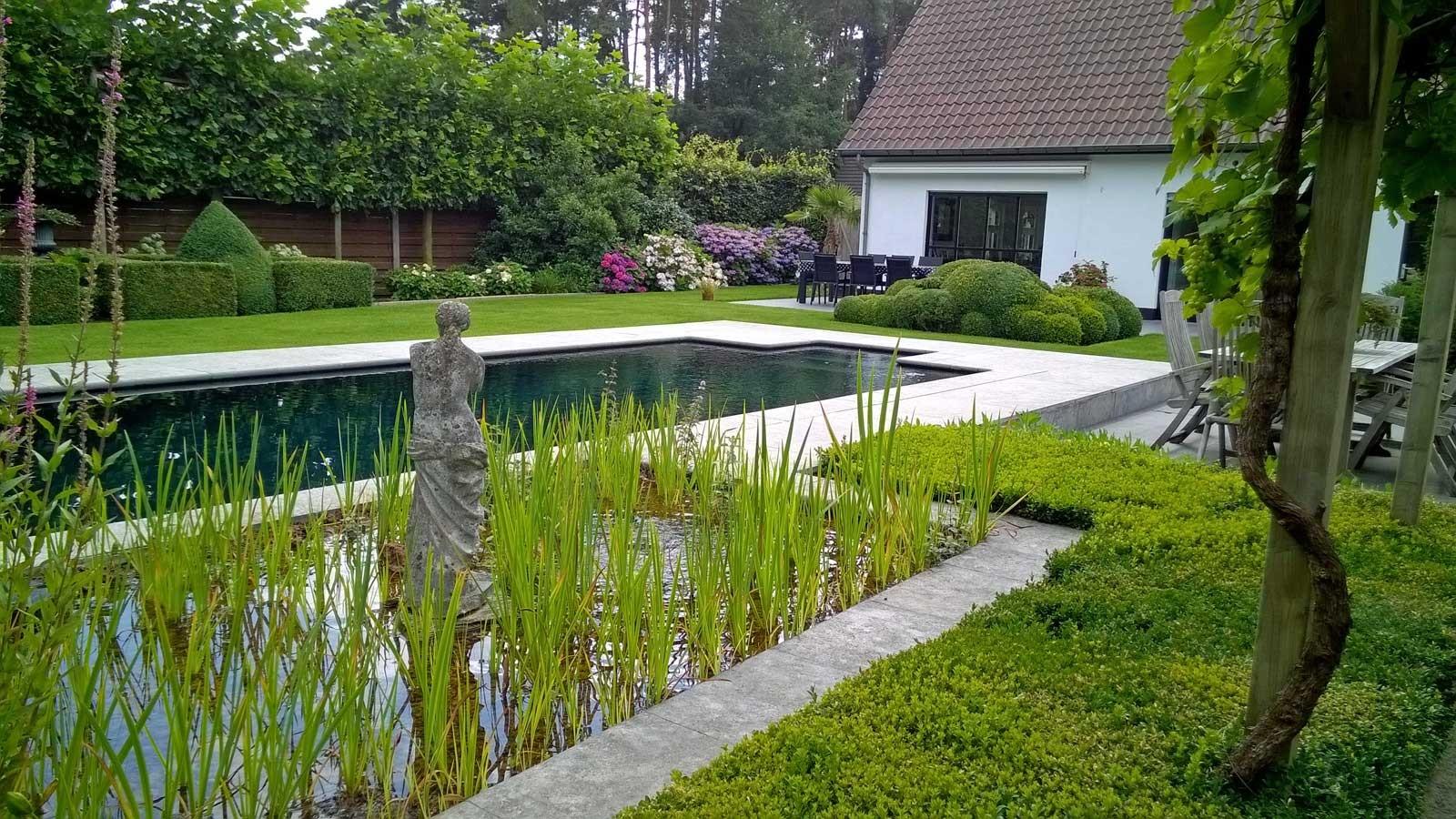 bio-pool.jpg