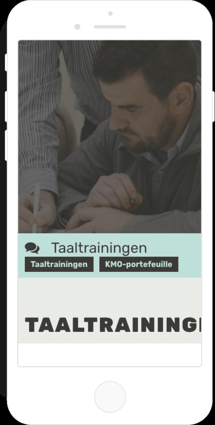 webdesign-Verlingua-phone-3.png