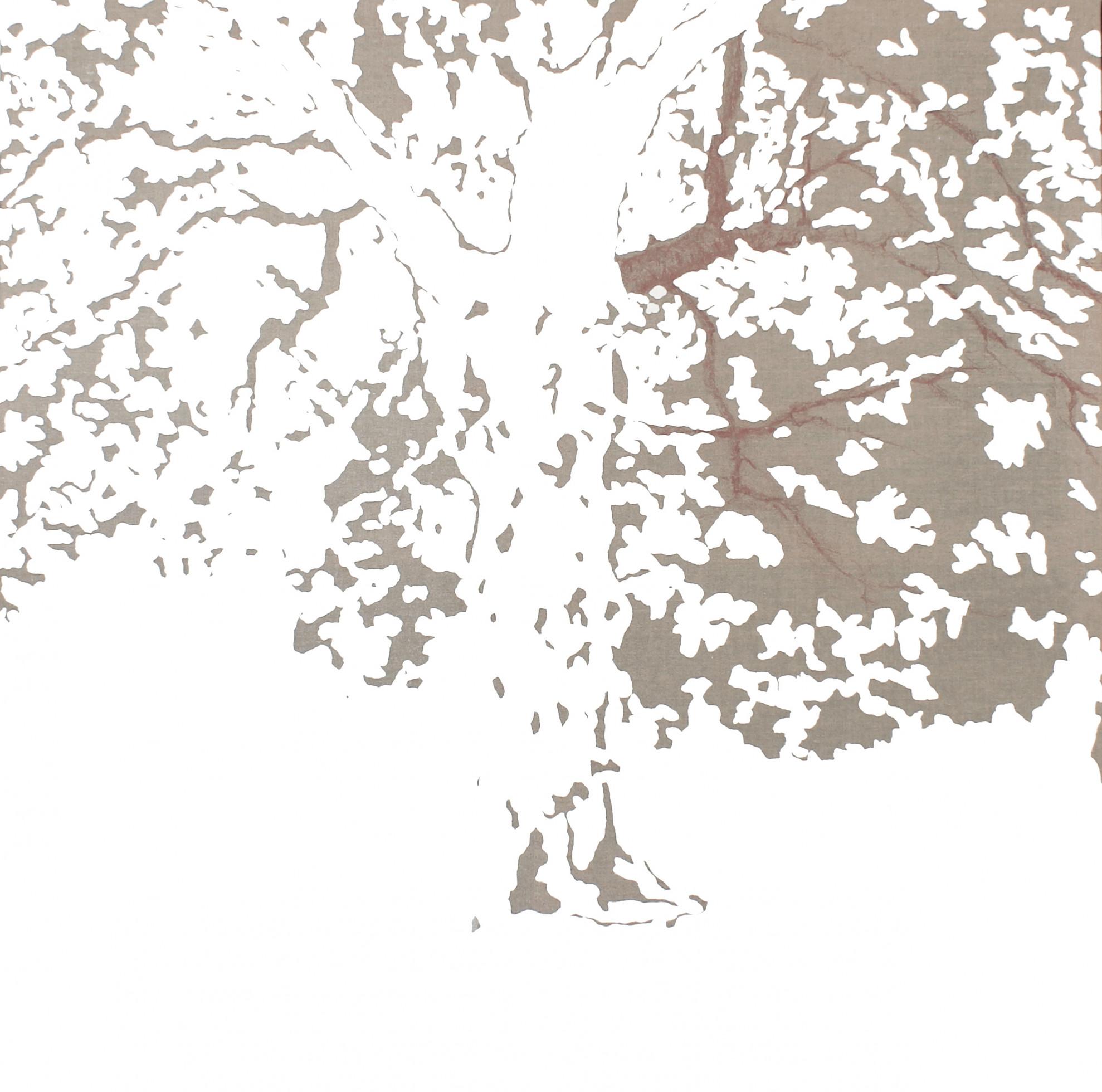 tree 120x120.jpg