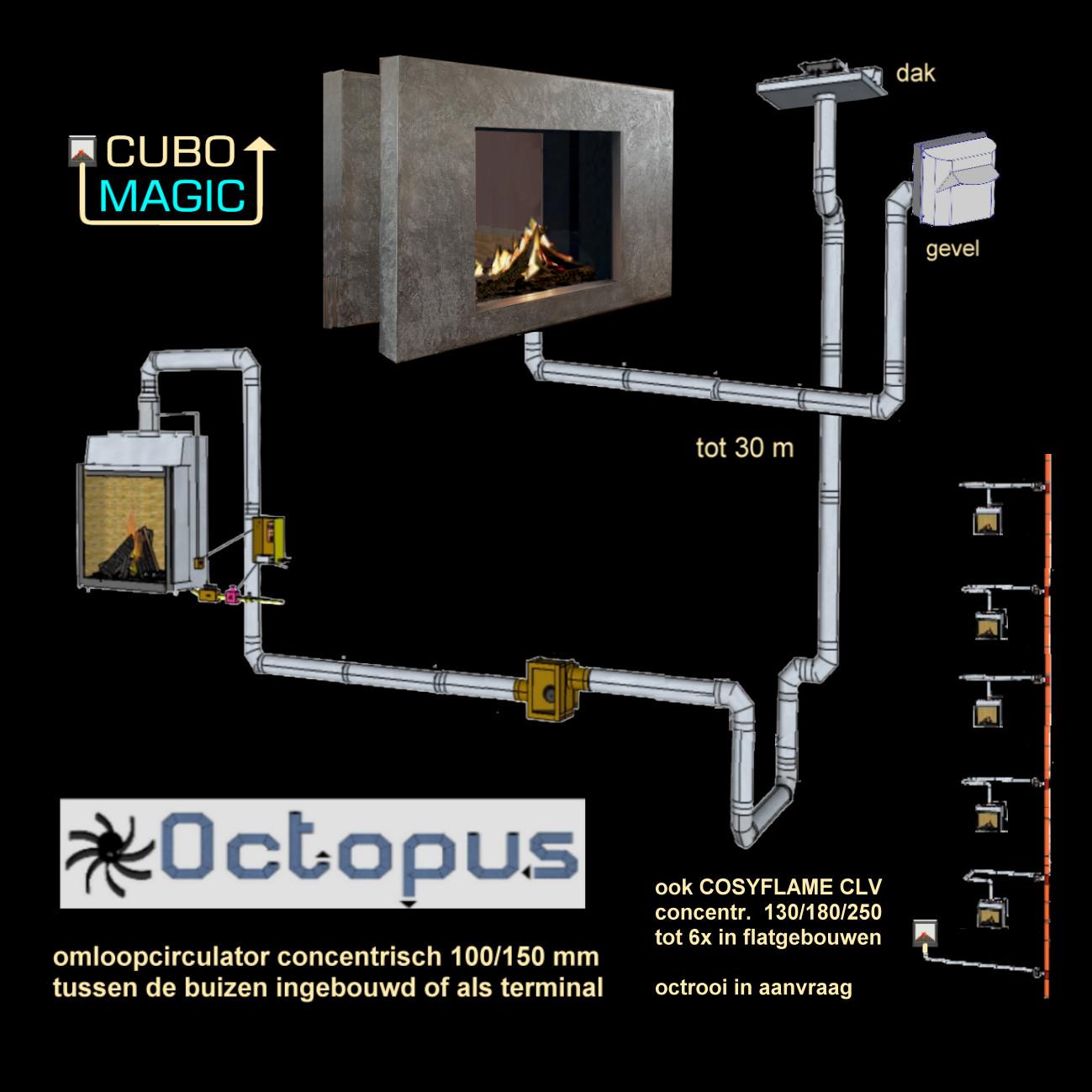 Octopus-2017-01-27-FOTO-pag-3-onder-R.jpg