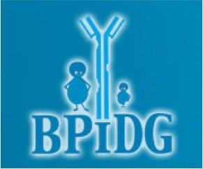 BPiDG_291x0.jpg