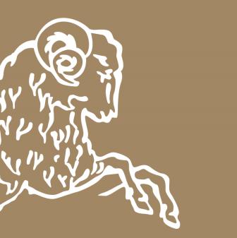 Brun de Vian Tiran logo goud.png