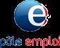1-logo-pole-emploi-petite-taille----356x305----12ko.png