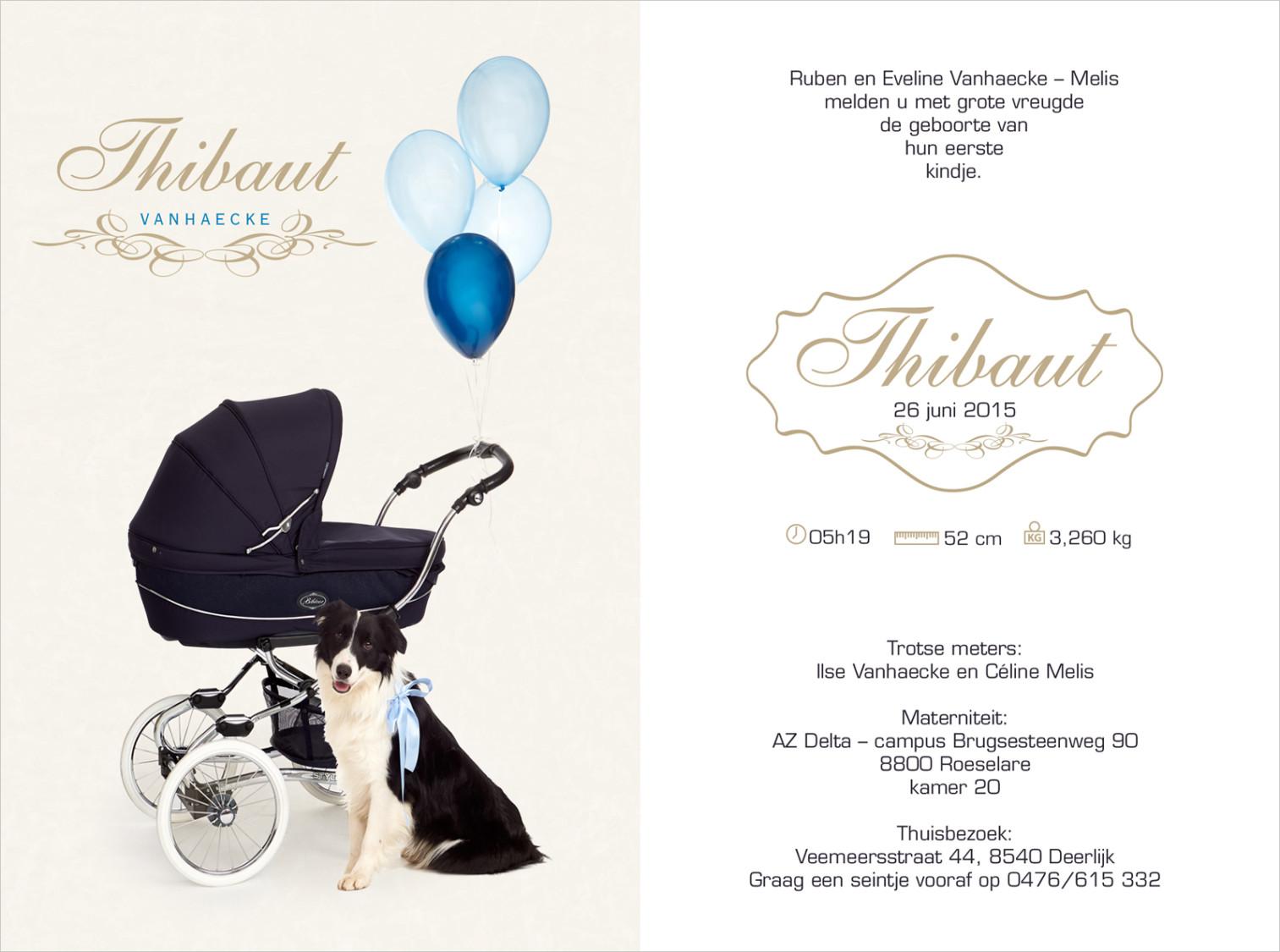 Geboortekaartje met foto van Thibault