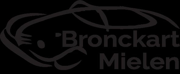 logo-garage-bronckart.png