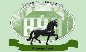 Gaasterland Dekstation.jpg