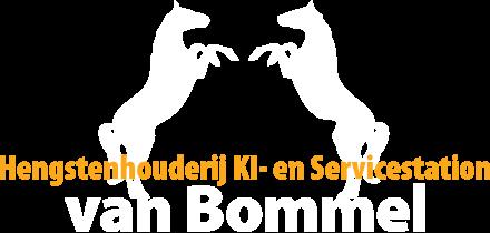 HH_Van_Bommel.png