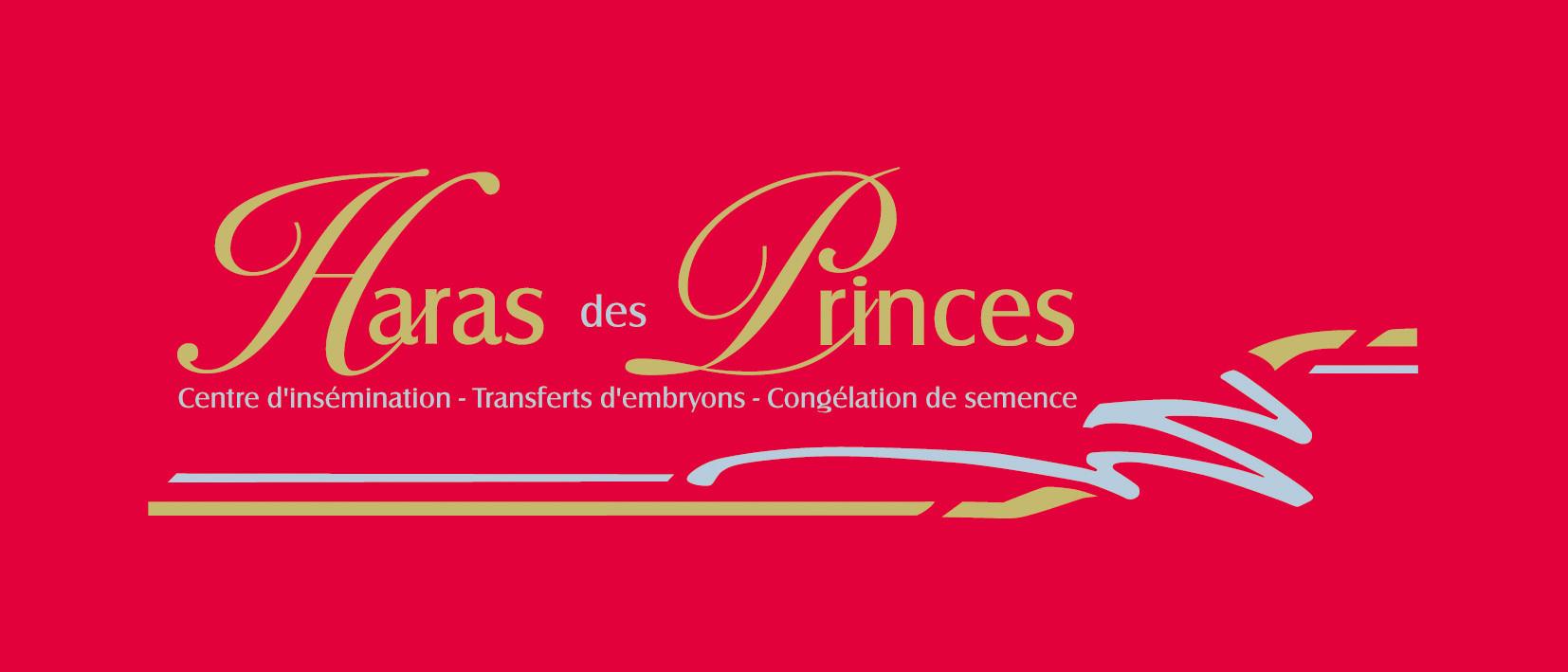 Haras_Des_Princes.jpg