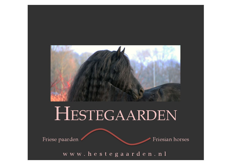 Hestegaarden_Hengstenhouderij.jpg