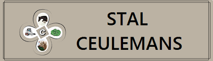Stal_Ceulemans.png
