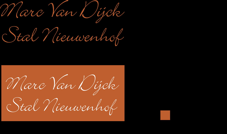 Van_Dijck_Marc-Nieuwenhof.png