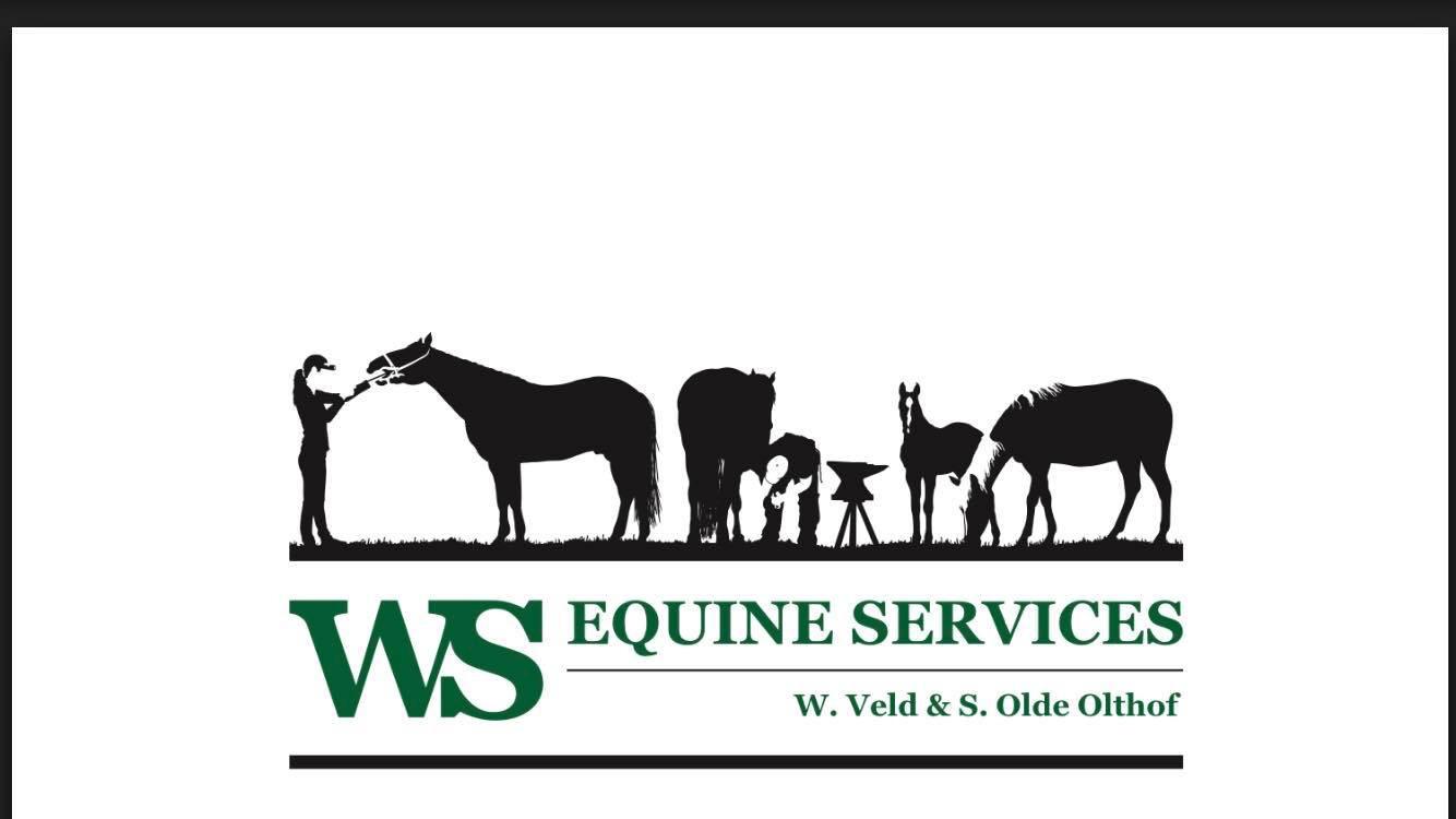 WS_Quarter_Horses.jpg