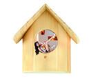 Concept Nest.jpg