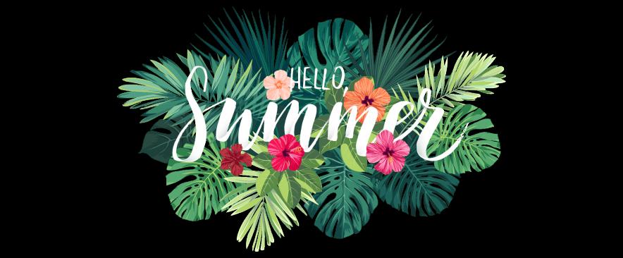 header-summercamp2018.png