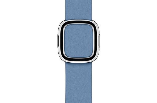 Apple-Watch-40mm-Cornflower-Modern-Buckle---Large.jpg